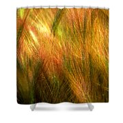Cat Tails Shower Curtain by Paul Wear