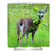 Caught In The Act Shower Curtain by Mike  Dawson