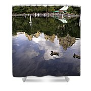 Central Park Pond With Two Ducks Shower Curtain by Madeline Ellis