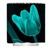 Change Of Perspective Shower Curtain by Amanda Barcon