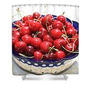 Cherries In Blue Bowl Shower Curtain by Carol Groenen