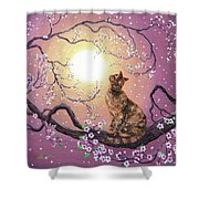 Cherry Blossom Waltz  Shower Curtain by Laura Iverson