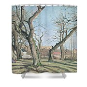 Chestnut Trees At Louveciennes Shower Curtain by Camille Pissarro
