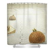 Christmas Journey Shower Curtain by Wim Lanclus
