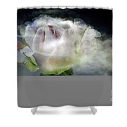 Cloud Rose Shower Curtain by Clayton Bruster