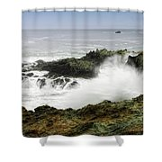Coastal Expressions Shower Curtain by Donna Blackhall