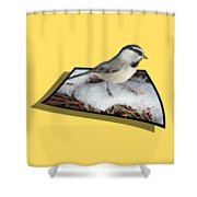 Cold Feet Shower Curtain by Shane Bechler