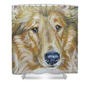 Collie Close Up Shower Curtain by Lee Ann Shepard