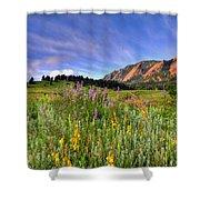 Colorado Wildflowers Shower Curtain by Scott Mahon