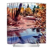 Cottonwoods In October Shower Curtain by Donald Maier