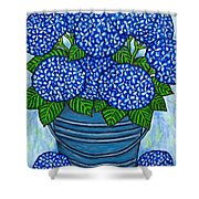 Country Blues Shower Curtain by Lisa  Lorenz