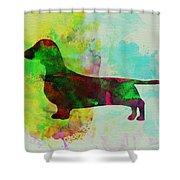 Dachshund Watercolor Shower Curtain by Naxart Studio