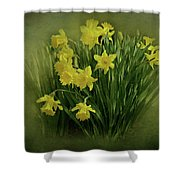 Daffodils Shower Curtain by Sandy Keeton