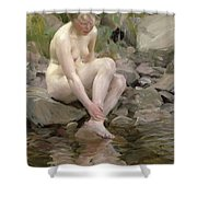 Dagmar Shower Curtain by Anders Leonard Zorn