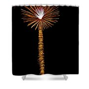 Dandelion Shower Curtain by Phill  Doherty