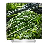 Dark green leafy vegetables Shower Curtain by Elena Elisseeva