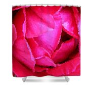 Deep Inside The Rose Shower Curtain by Kristin Elmquist