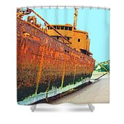 Desdemona 2 Shower Curtain by Dominic Piperata