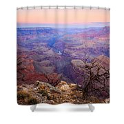 Desert Glow Shower Curtain by Mike  Dawson