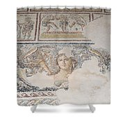 Dionysus Mosaic Mona Lisa Of The Galilee Shower Curtain by Ilan Rosen