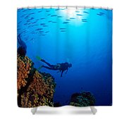 Diving Scene Shower Curtain by Ed Robinson - Printscapes