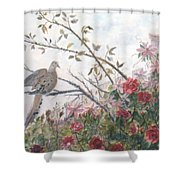 Dove And Roses Shower Curtain by Ben Kiger