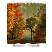 Down the Mountain Shower Curtain by Lois Bryan