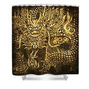 dragon pattern Shower Curtain by Setsiri Silapasuwanchai