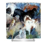 Dream Of Wild Horses Shower Curtain by Christie Michelsen