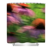 Dreaming Of Flowers Shower Curtain by Karol Livote