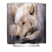 Dreamscape - Wolf Shower Curtain by Sandi Baker