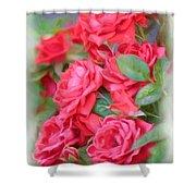 Dreamy Red Roses - Digital Art Shower Curtain by Carol Groenen