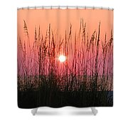 Dune Grass Sunset Shower Curtain by Bill Cannon