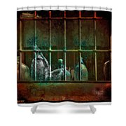Dusty Old Bottles Shower Curtain by Mal Bray