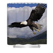 Eagle Flying In Sunlight Shower Curtain by John Hyde - Printscapes