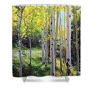 Early Autumn Aspen Shower Curtain by Gary Kim