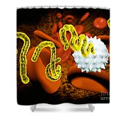 Ebola Virus Shower Curtain by Victor Habbick Visions and SPL and Photo Researchers