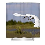 Egret Ballet Shower Curtain by Mike  Dawson