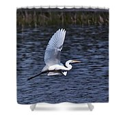 Egret Vi Shower Curtain by Gary Adkins