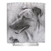 Eliot Shower Curtain by Jack Skinner