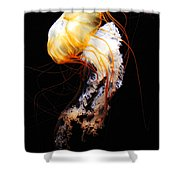 Enigma Shower Curtain by Andrew Paranavitana