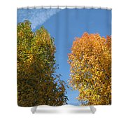 Equinox Shower Curtain by James Barnes