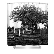 Etched In Stone Shower Curtain by Donna Blackhall