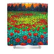 Evening Poppies Shower Curtain by John  Nolan