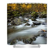 Fall Surge Shower Curtain by Mike  Dawson