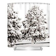 Family Of Trees Shower Curtain by Marilyn Hunt