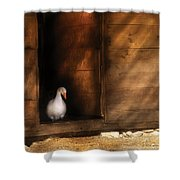 Farm - Duck - Welcome To My Home Shower Curtain by Mike Savad
