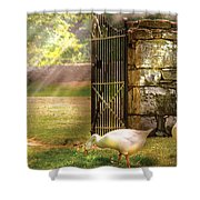 Farm - Geese -  Birds of a Feather Shower Curtain by Mike Savad