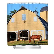 Farm Shower Curtain by Mitch Cat