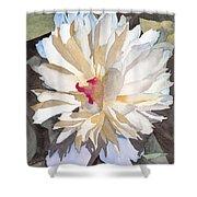 Feathery Flower Shower Curtain by Ken Powers